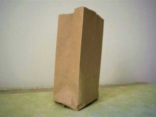 Brown Food Paper Bag